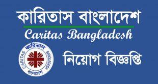 Caritas Bangladesh Job Circular 2020 - www.caritas.org