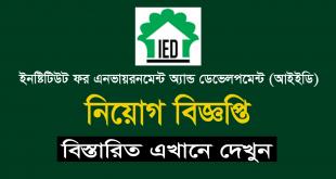 Institute for Environment and Development Job Circular 2020 - Chakrir Mela