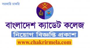 Bangladesh Cadet Colleges Jobs Circular 2020 । www.cadetcollege.army.mil.bd