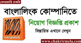 Banglalink Job Circular 2020 - www.banglalalink.net