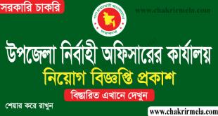 Upazila Nirbahi Officer Job Circular 2021 | Chakrir Mela