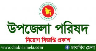 Upazila Parishad Job Circular 2021 Application Form Download